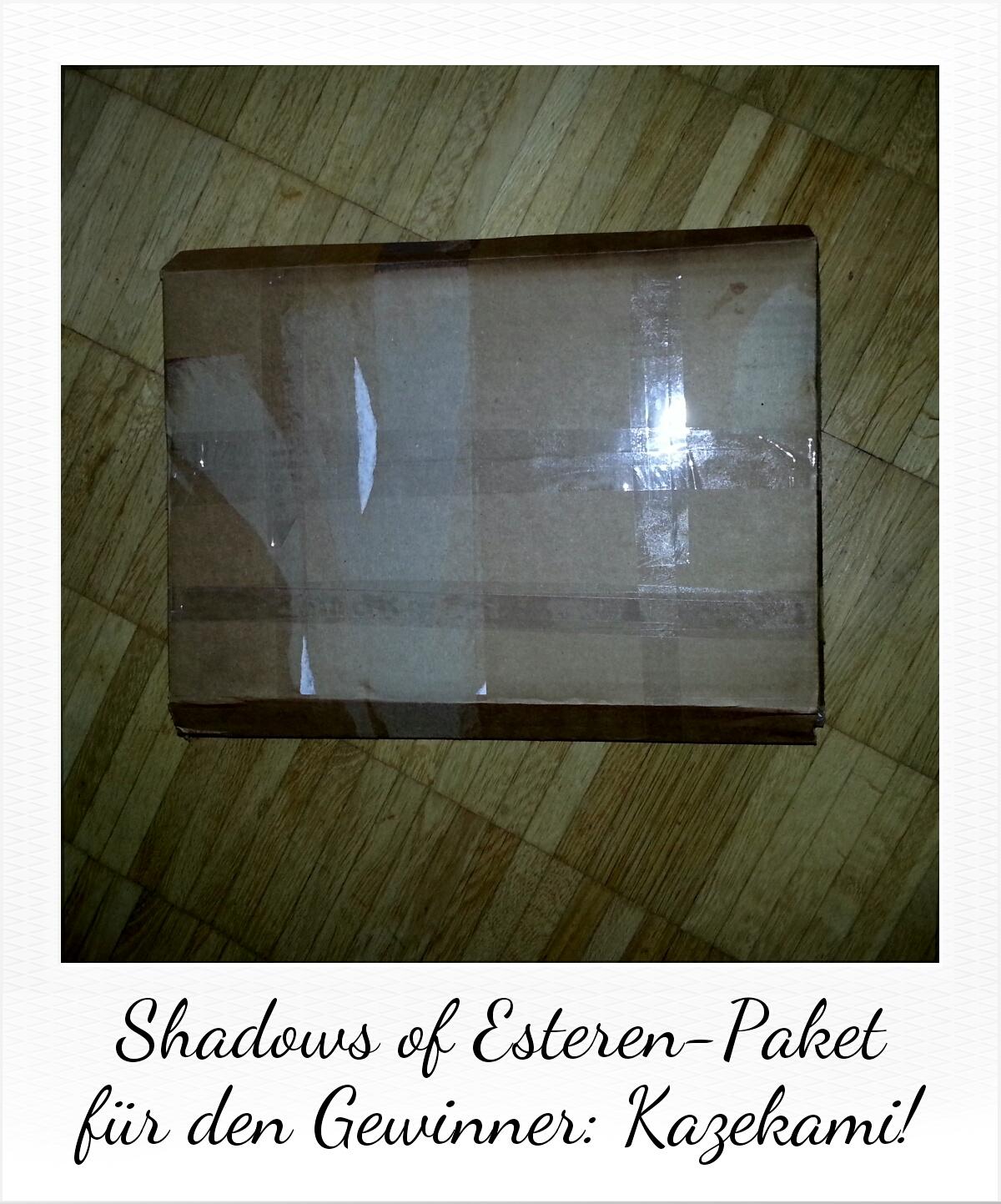 Shadows Of Esteren-Wettbewerb: Gewinner-Paket